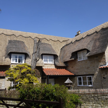 Roof Thatching Gallery