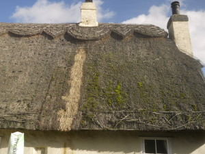 Thatching Repair Services