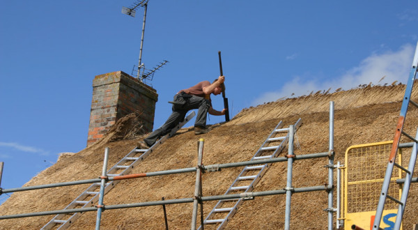 Professional Thatching Services